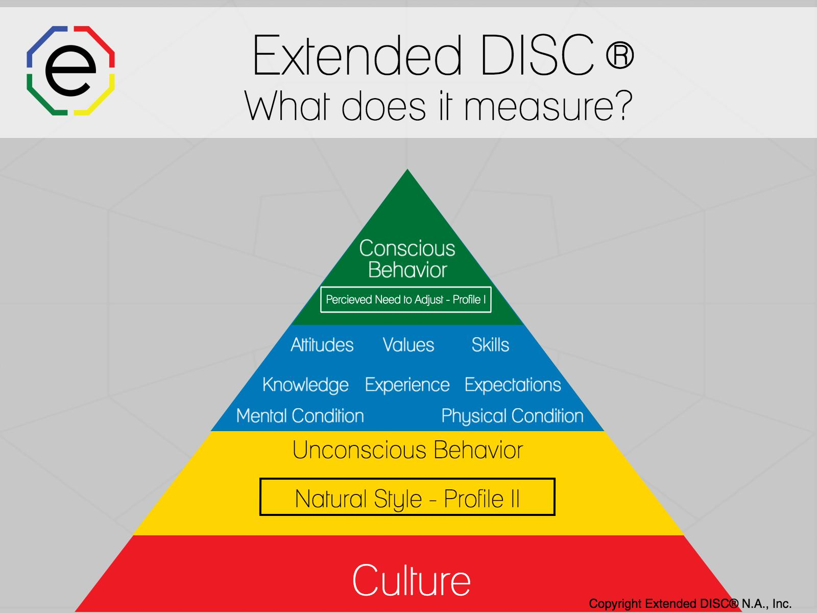 Extended DISC: What Does it Measure?