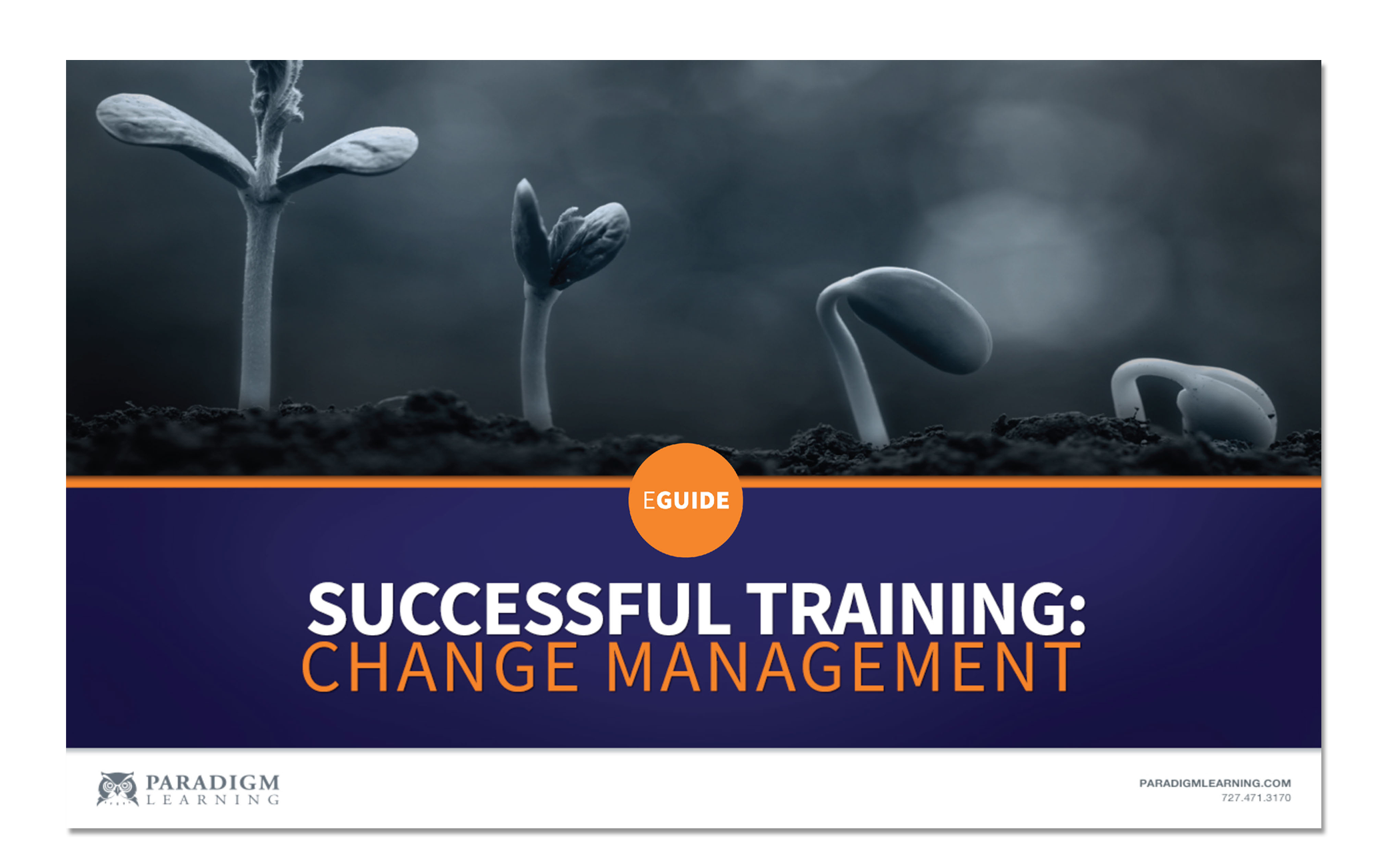 eGUIDE: Successful Training: Change Mana...