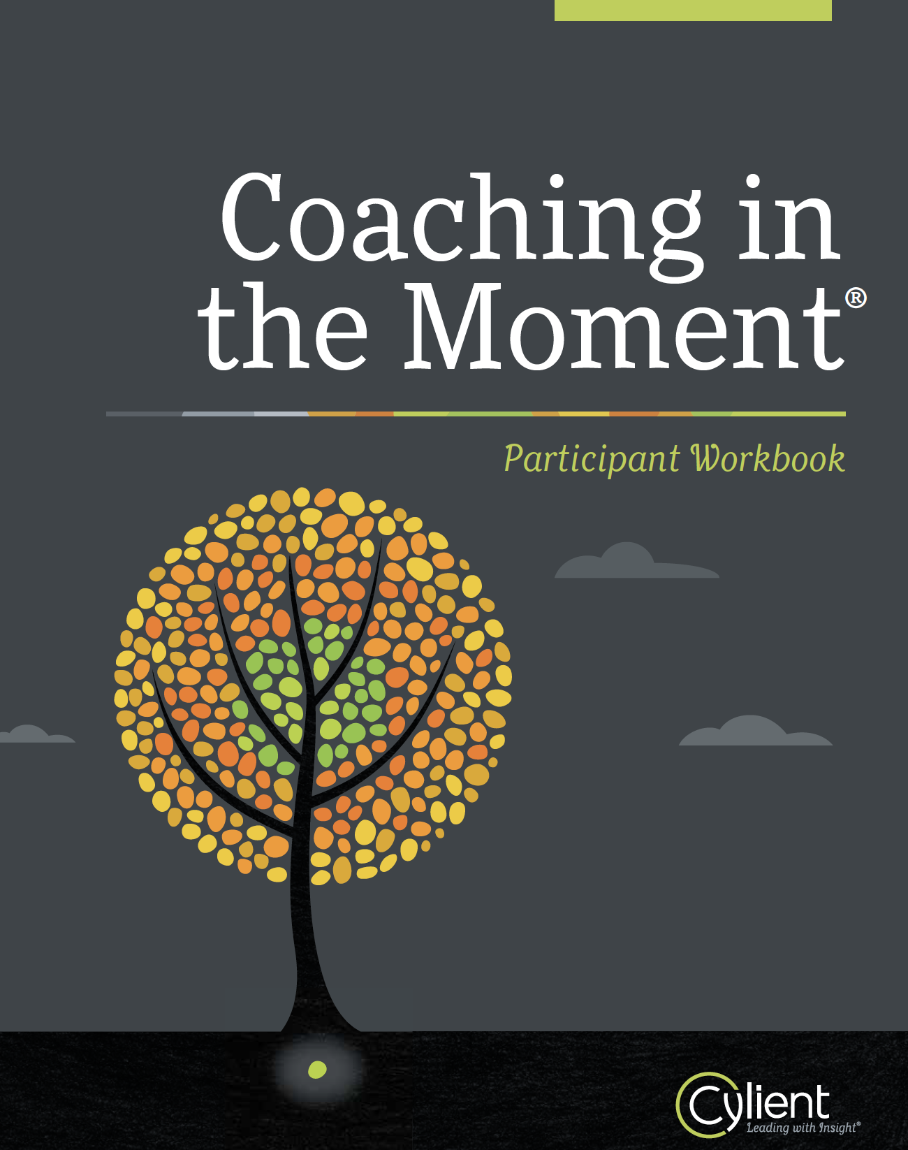 Coaching in the Moment® workshop